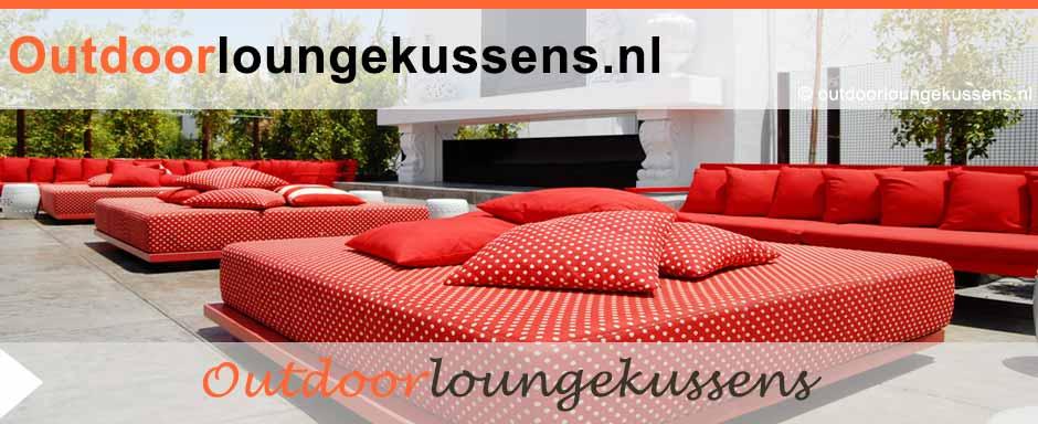 Zijn goedkope loungekussens een beste keuze for Goedkope lounge kussens