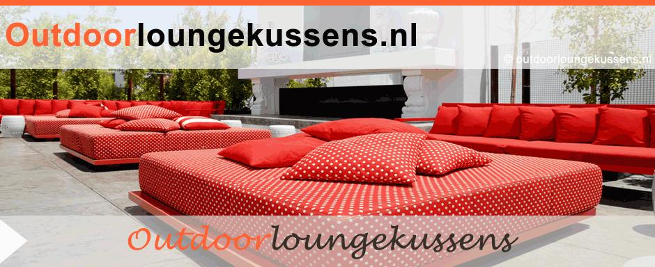 Loungekussens op Maat   Voor Loungebanken